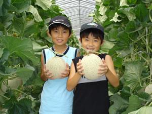 KEK直営 岩瀬直売所|スーパーフルーツトマト NKKアグリドリーム