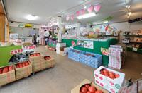 KEK直営 岩瀬直売店|スーパーフルーツトマト NKKアグリドリーム