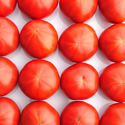 NKKアグリドリームについて|スーパーフルーツトマト NKKアグリドリーム