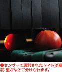 KEKオリジナル スーパーフルーツトマト|スーパーフルーツトマト NKKアグリドリーム